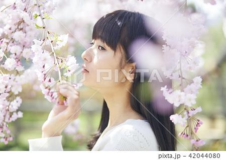 桜 ポートレート 42044080