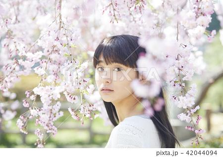 桜 ポートレート 42044094