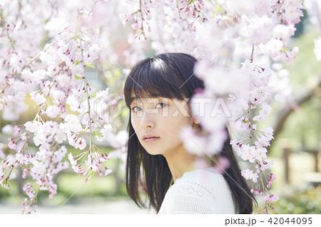 桜 ポートレート 42044095
