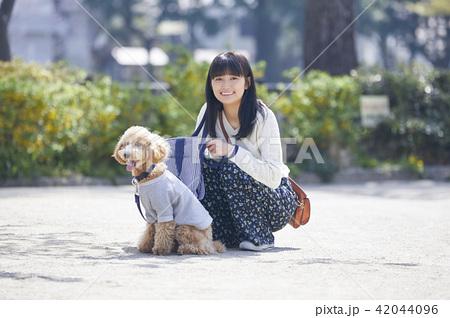 女性 犬の散歩 42044096
