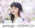 女性 桜 春の写真 42044114
