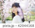 屋外 晴れ 桜の写真 42044168