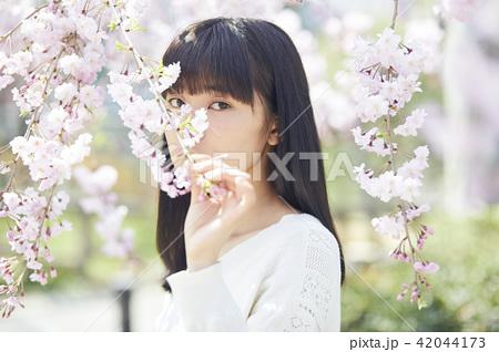 桜と女性 ポートレート 42044173