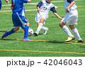 少年サッカー試合風景 42046043
