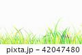 背景素材 草原 蛍 42047480
