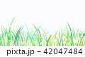 背景素材 草原 蛍 42047484