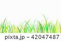 背景素材 草原 蛍 42047487