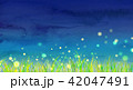 草原 夏 夜空のイラスト 42047491