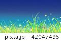 草原 夏 夜空のイラスト 42047495