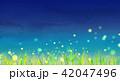草原 夏 夜空のイラスト 42047496