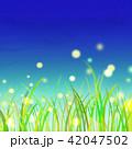 草原 夏 夜空のイラスト 42047502
