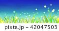 背景素材 草原 蛍 42047503