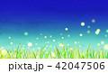 草原 夏 夜空のイラスト 42047506