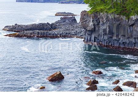 城ケ崎海岸の柱状節理、静岡県伊東市八幡野橋立にて 42048242