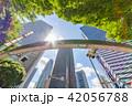 新緑 夏 ビル群の写真 42056788