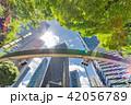 新緑 夏 ビル群の写真 42056789