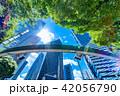 新緑 夏 ビル群の写真 42056790