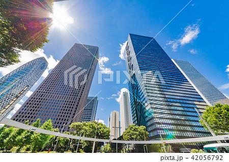 新緑と高層ビル群 42056792