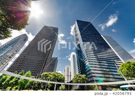 新緑と高層ビル群 42056793