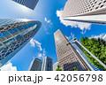 高層ビル 新緑 ビル群の写真 42056798
