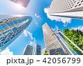 高層ビル 新緑 夏の写真 42056799