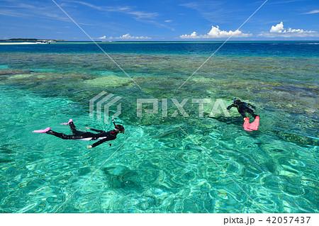 沖縄 シュノーケリング イメージ 42057437