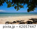 沖縄 ビーチ 砂浜の写真 42057447