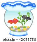 金魚 金魚鉢 魚のイラスト 42058758
