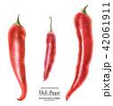 水彩画 赤い 胡椒のイラスト 42061911
