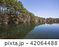 五色沼 沼 柳沼の写真 42064488