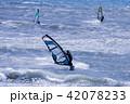 ウインドサーフィン 42078233
