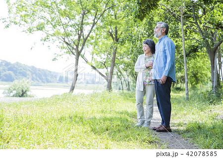シニア 女性 夫婦 新緑 公園 散歩 アクティブシニア 42078585