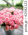 light pink bush roses flowers in vase on wooden table. Beautiful summer bouquet. Arrangement with 42082122