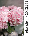 light pink hydrangea flowers in vase on wooden table. Beautiful summer bouquet. Arrangement with mix 42082191