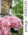 light pink hydrangea flowers in vase on wooden table. Beautiful summer bouquet. Arrangement with mix 42082192
