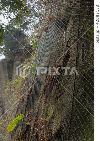 崖崩れ防止ネット 42083153