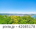 横浜 晴れ 風景の写真 42085178