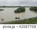 洪水 42087708