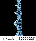 DNA, 遺伝子 42090225