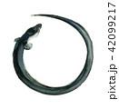 鰻 水彩画 土用の丑の日のイラスト 42099217