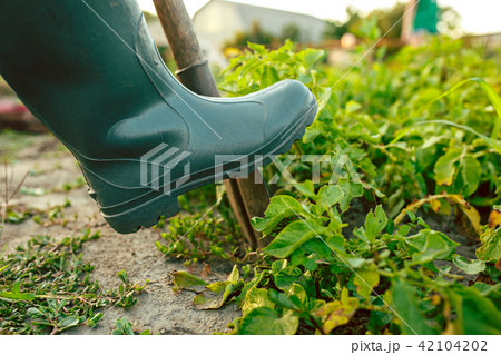 farming, gardening, agriculture and people concept 42104202