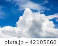 夏の青空 42105660