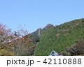 筑波山・ロープウェイ 42110888