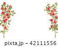 花 植物 バラのイラスト 42111556