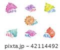 カラフルなヤドカリ 水彩イラスト 42114492