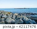 岩場 海 海岸の写真 42117476