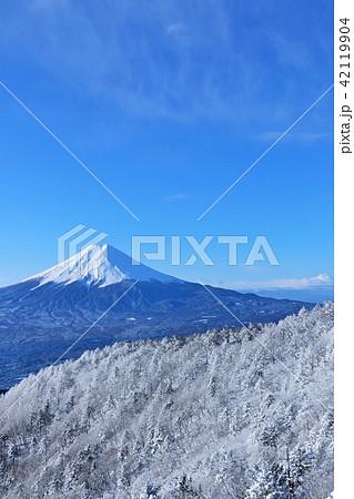 富士山と冬の銀世界 42119904