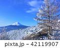 富士山 冬 雪山の写真 42119907