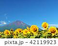 夏を彩る富士山とひまわり 42119923