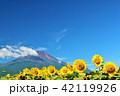 夏を彩る富士山とひまわり 42119926